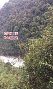 拉萨慢二零 带你看西藏! 帕龙藏布江峡谷~ #西藏旅行 #拉萨骑行 #拉萨租自行车