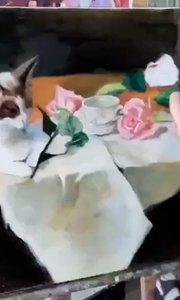 北京艺方美术学员夏云汉油画静物作品《姜黄猫和玫瑰花》第三阶段 零基础学油画#我就是爱画画##我爱画油画##书画之美