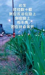 此生 短短数十载 就应该活在路上 倒在路上 而不是 困在终点等死