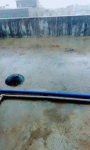 哈哈  差点就淋雨了。