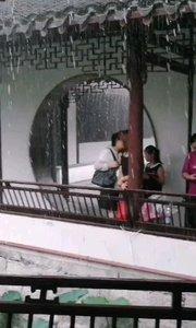 醉白池公园突遇大雨