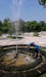 广富林遗址公园,孩子们还是愿意玩水。