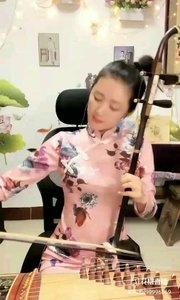 胡筝恋caicai