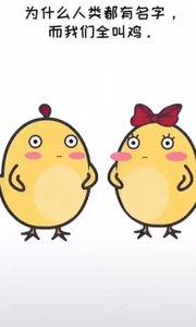 为什么鸡活着的时候全?