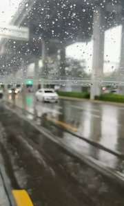 #9月原创视频达人赛  秋分后的雨天,拿来吟诗,说个愁什么的最恰当不过了