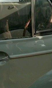 1969年 比利时莫里斯汽车,国外手续齐全