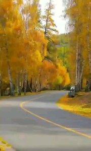 #户外动起来 #书画之美 #带着花椒去旅行 #我的秋日穿搭 金秋十月