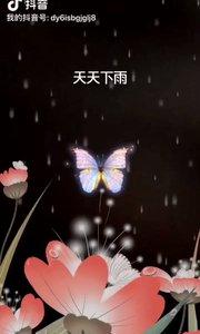 现实的雨天 梦中的晴天。 不知何日才实现。