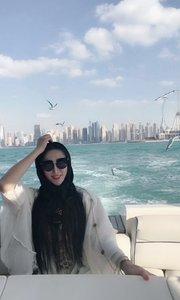 迪拜波斯湾出海看海鸥
