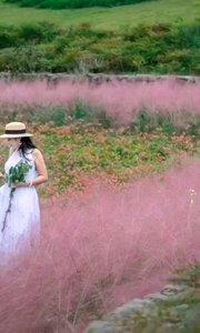 《一簾幽夢》  人海茫茫 你在哪里 春去秋來悄然去 一簾幽夢付春風……