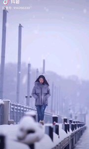 《冬日恋曲》  飞雪的冬日里 我思念着远方的你 真想变一只大雁 向你怀里飞去……