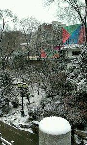我爱你  塞北的雪
