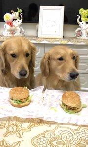 吃个汉堡包? 这眼神这表情 没谁了…