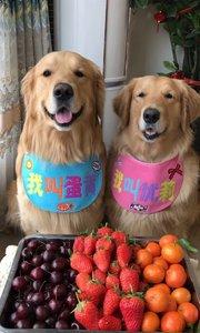 爱吃水果的旺