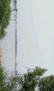黄河岸边风景如画。