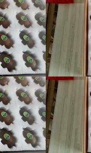香甜可口的【翠香】猕猴桃上市啦!
