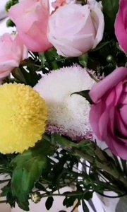 花的颜色很美,自己给自己买的花,每一棵都是最爱(⑉°з°)-♡