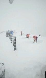 呦山上的雪下的太大