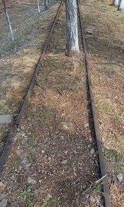 风光不显的小火车道