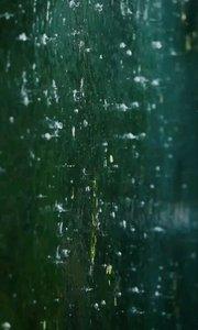 山海经 - 蠃鱼邽山,蒙水出焉南流注于洋水,其中多黄贝蠃鱼,鱼身而鸟翼,音如鸳鸯,见则其邑大水。