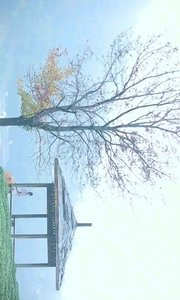 我应在江湖悠悠,饮一壶浊酒。
