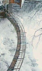 借一丝微风清逸,披一件淡雅素衣,饮一杯雪前清茶,漫步于春雪下,任白花纷落,温文尔雅,净玉无瑕。