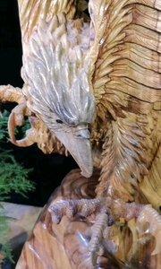 胜利在握?            一只老鹰,寓意大展宏图、自由翱翔 老鹰,是自由和拼搏精神的象征,有祝福和勉励的含义