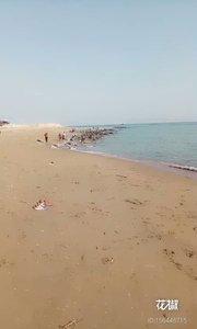 海边一日游。。。。。