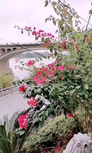 永州道县,沱江,潇水大桥
