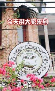 一家极具特色的猫头鹰咖啡馆