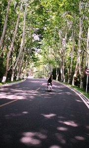 周末骑行中山陵景区,满眼绿色感觉相当不错,四方城,美龄宫,中山陵,灵谷寺,紫金山路,紫金山东路,沿路骑行两侧的梧桐树感觉相当不错,夏天在这样的道路上骑行相当不错。