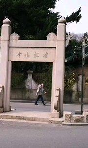 """古鸡鸣寺,樱花""""消息树""""已开,预示着即将到赏樱花季,今年有些特殊,【嘀~】第一,赏樱第二。#户外动起来 #樱花 #南京"""