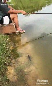 当当当当,*^o^*鱼其实很聪明的,可能有一种鱼或,ta消磨时间的方式,就是看你钓鱼。