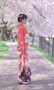 在这美丽的樱花树下, 不知为何,突然想跳?#27426;?#33804;萌的舞 不知为何,突然想和你来一次?#21152;?想和你一起舞蹈,想和你一起走过这段美丽的路