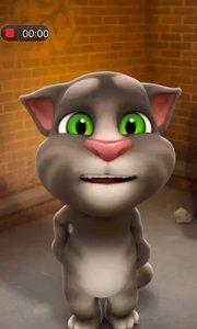 汤姆猫 ??