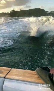海洋世界???