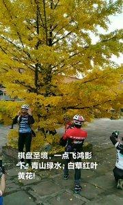 棋盘圣境,一点飞鸿影下,青山绿水,白草红叶黄花!#我和秋天