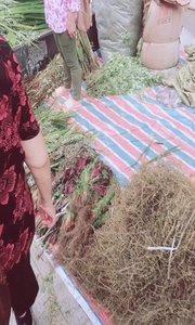 重庆这是啥习俗,要买这么多草,?️知道是干嘛用的吗