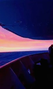 晨光下的海洋   全部是生机的活力