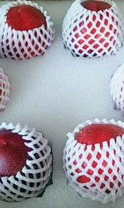 每箱10颗桃,今年4月份遇冰雹,可谓百里挑一?