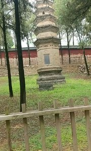 2019年4月21日,初游嵩山少林寺,实录七。