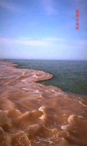 因为密度不同,黄河无法独流入海。 像极了数学中一句悲伤的话: 无限接近,永不相交。