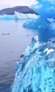 美麗的冰川 安排(?????)