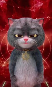猫咪。哈哈