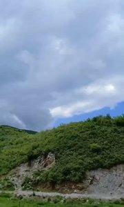 青山常在,绿水长流!