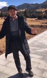 #带着花椒去旅行 野牦?;峁セ魅?,家养的不会,老铁们来西藏开车慢点,因为牦牛过马路不急不慌???