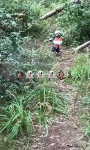 万山丛中遇到鬼??