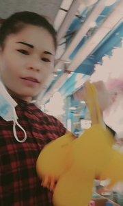 #精彩录屏赛 #又嗨又野在玩乐 好玩可爱的小黄鸡