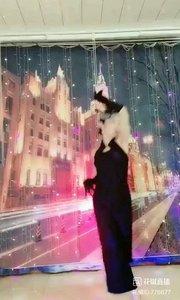 #轻歌曼舞 #我怎么这么好看 @✨火爆猴? #性感不腻的热舞 #主播的高光时刻 #爱跳舞的我最美 #一个眼神撩到你! 《猴舞专辑》