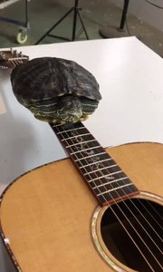 #吉他教学 吉他应该这样弹